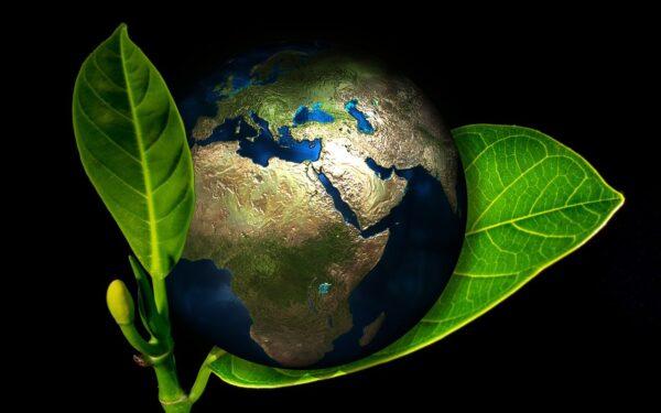 FEBRABAN e CEBDS lançam Guia para Emissão de Títulos Verdes no Brasil