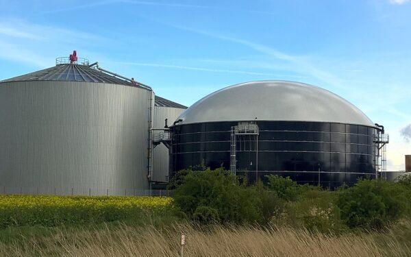 São Paulo vai mapear o potencial de biomassa e instalará biodigestor na Unesp