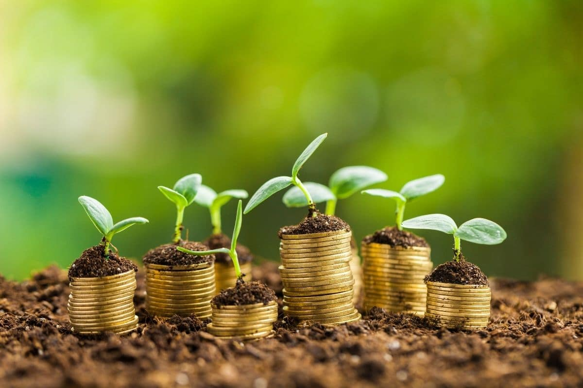 Como investir para alcançar a sua meta